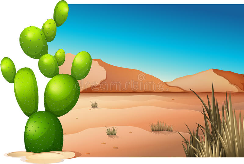 在沙漠的一个仙人掌 皇族释放例证