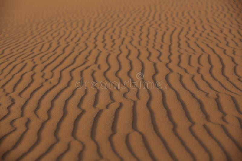 在沙漠的沙子雕塑 免版税库存照片