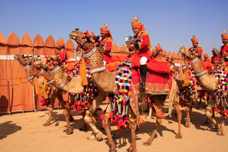 在沙漠节日的骆驼队伍, Jaisalmer,印度 库存照片