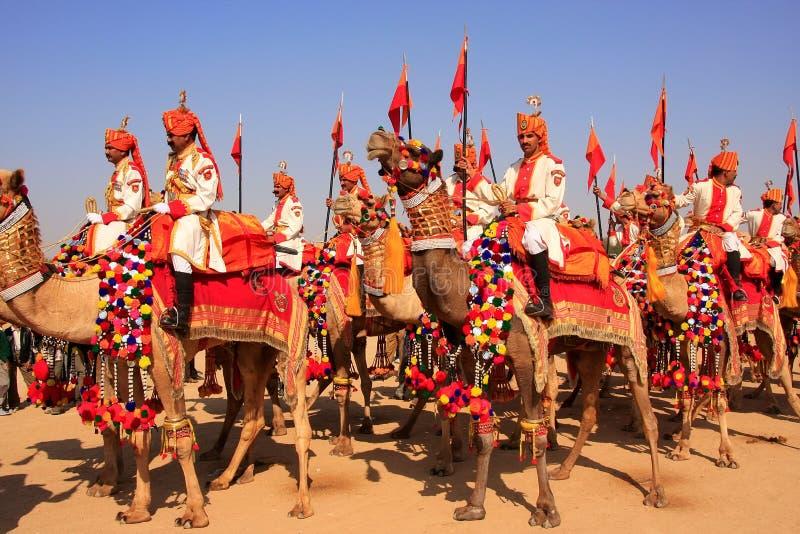 在沙漠节日的骆驼队伍, Jaisalmer,印度 免版税图库摄影