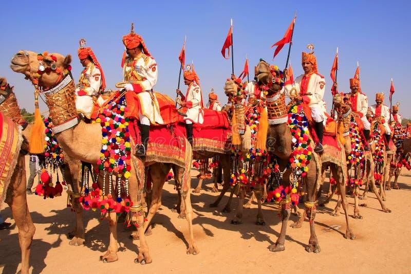 在沙漠节日的骆驼队伍, Jaisalmer,印度 免版税库存图片