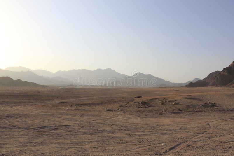 在沙漠,南西奈省, Qesm Sharm灰Egipt回教族长, 库存照片