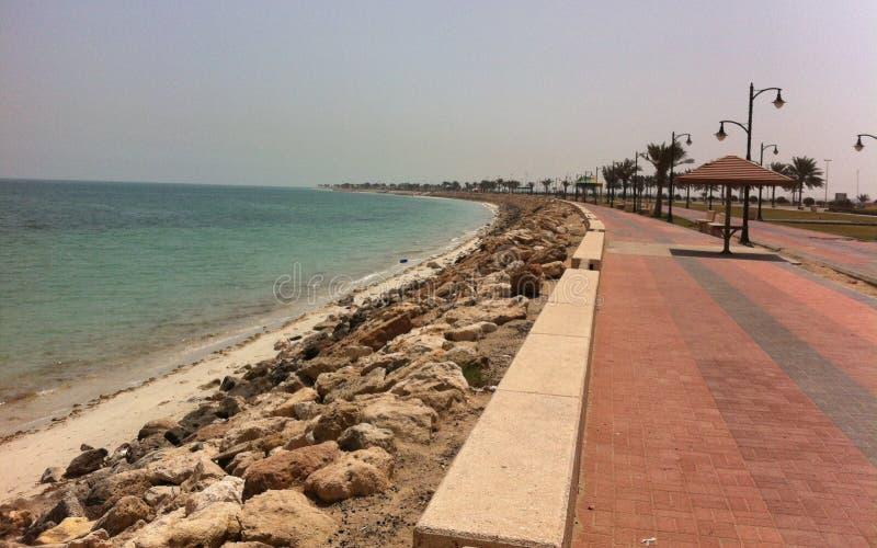 在沙特阿拉伯的东海岸的壮观的沿海看法 库存图片