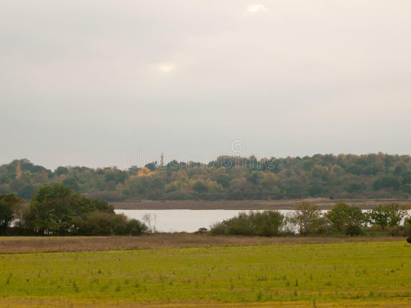 在河小河阴云密布秋天s前面的绿色领域风景 免版税库存照片