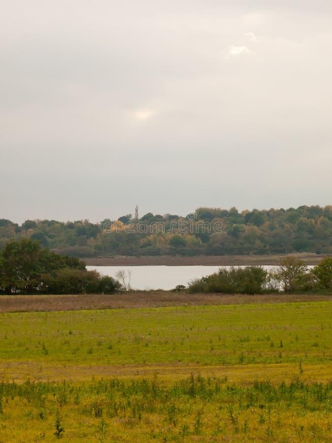 在河小河阴云密布秋天s前面的绿色领域风景 库存图片