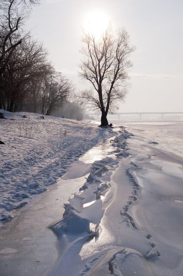 在河岸的冬天海滩 免版税库存照片