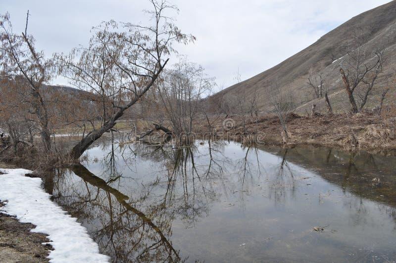 在河岸的熔化的雪 库存图片