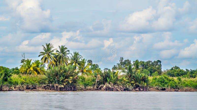 在河岸的美丽的景色 图库摄影