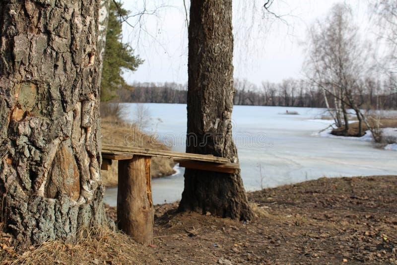 在河岸的长木凳有冰的 库存图片