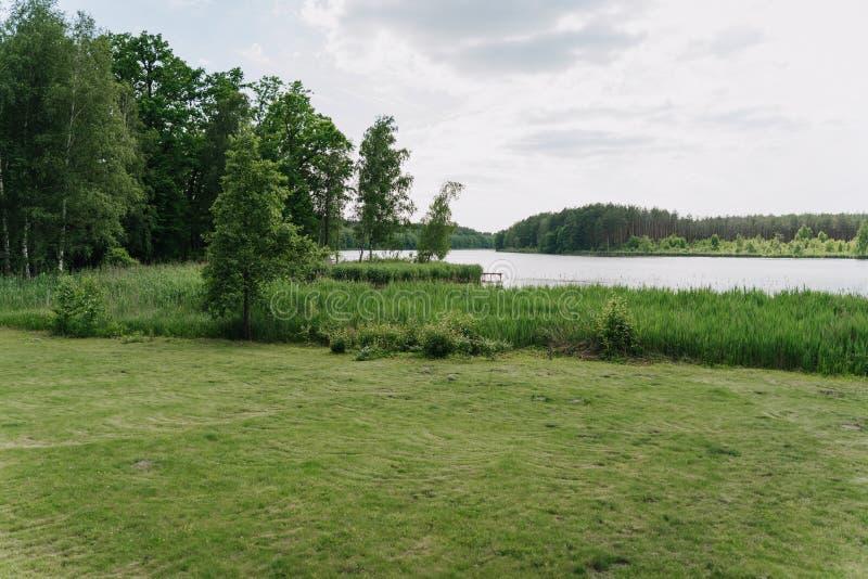 在河岸风景附近的绿色夏天草甸 免版税库存图片
