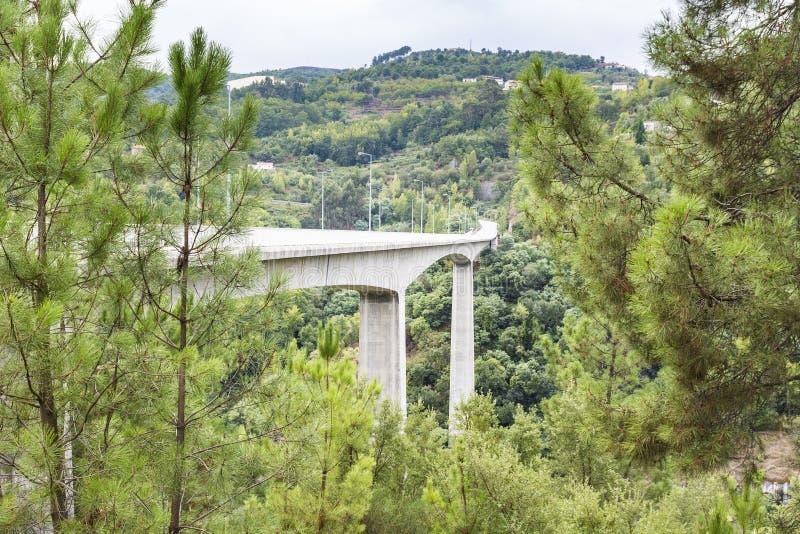 在河杜罗河的桥梁 免版税库存照片