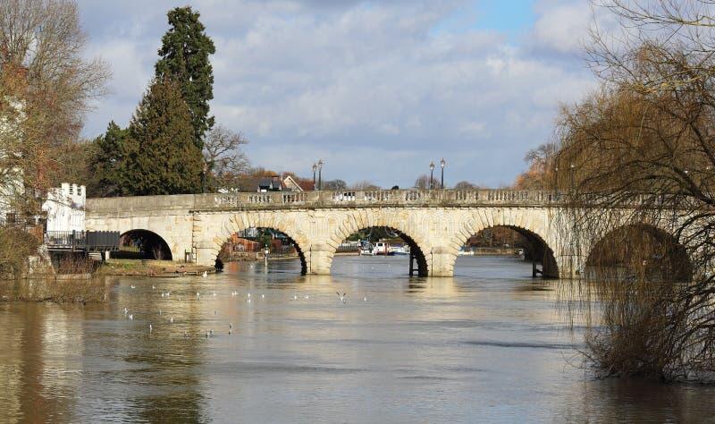 在河泰晤士的冬天在柏克夏,英国 免版税库存图片