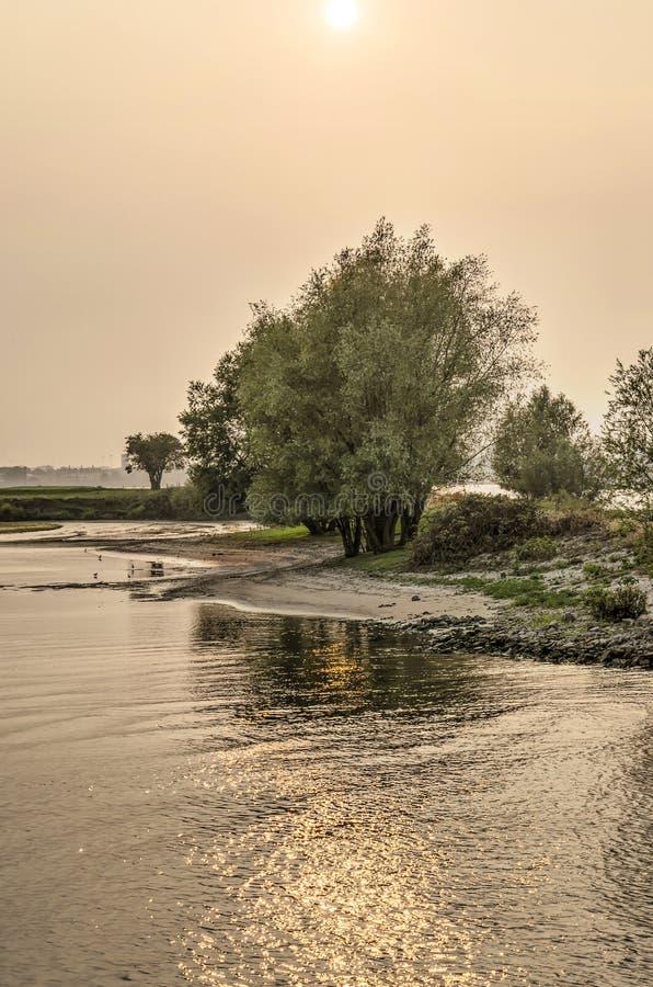 在河海滩的低太阳 图库摄影