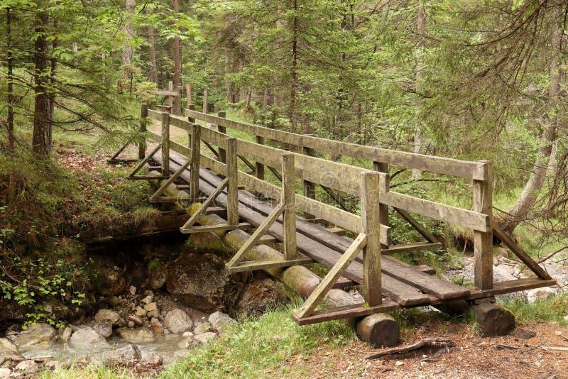 在河的一个老木桥 库存图片