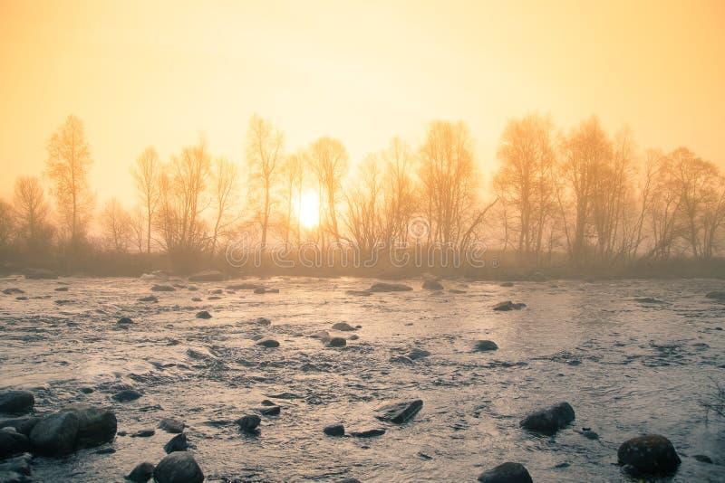 在河的一处美好,五颜六色的有薄雾的早晨风景 挪威天气在秋天 免版税图库摄影