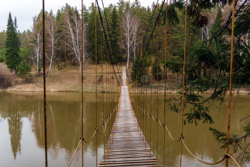 在河的吊桥在春天森林 库存图片
