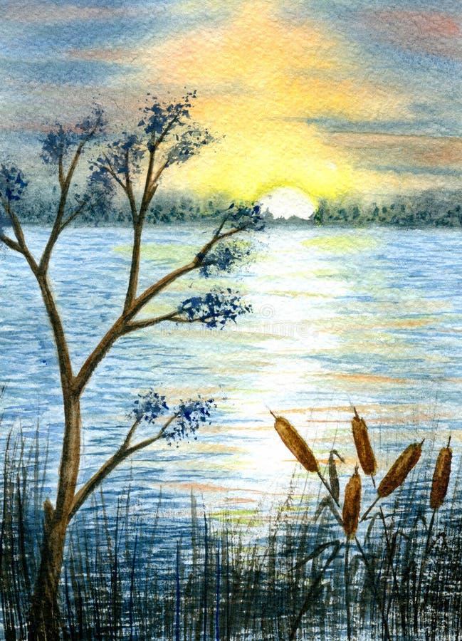 在河的日落 向量例证