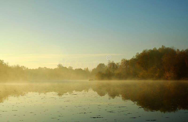 在河的早晨 库存图片