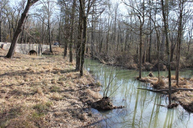 在河的晴朗的冷的天 免版税库存照片
