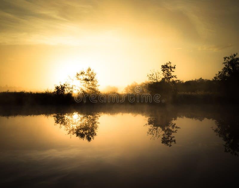 在河的有薄雾的黎明 太阳的光芒从树的后面 免版税图库摄影