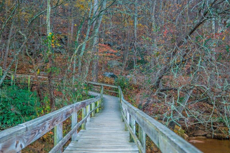 在河的木板走道足迹 免版税库存照片