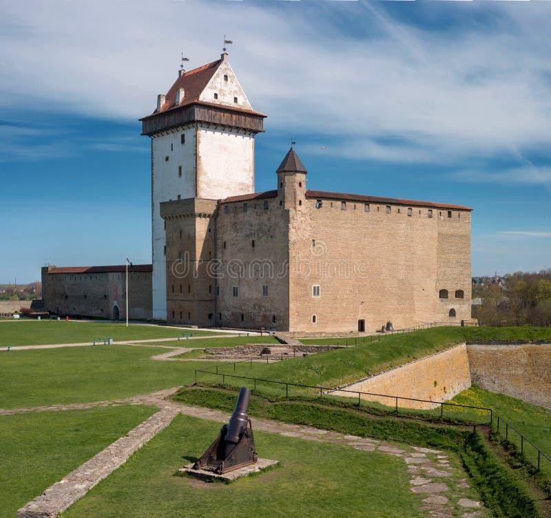 在河的河岸的纳尔瓦,爱沙尼亚-埃尔曼城堡,在Ivangorod堡垒对面 库存照片