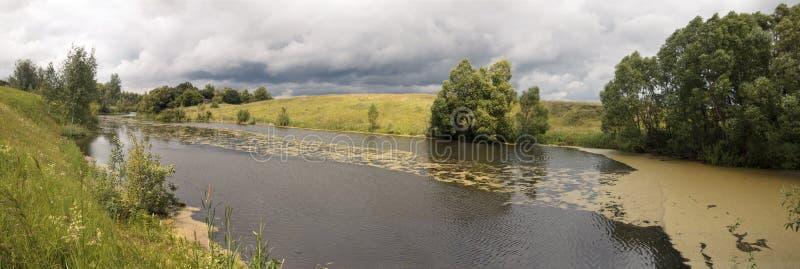 在河的河岸,树增长 在河浮动浮萍 免版税库存图片
