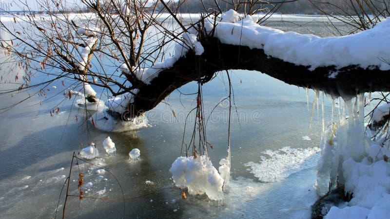 在河的美丽的蓝色冰在冬天 免版税库存图片