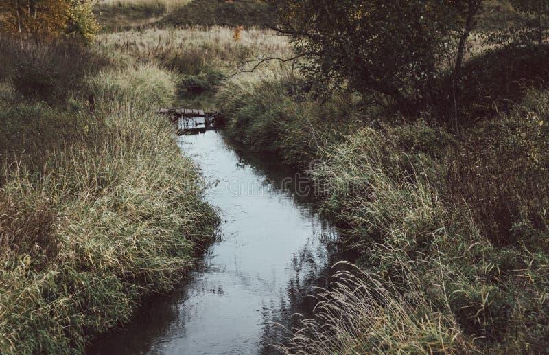 在河的老木桥在秋天 与河和桥梁的秋天风景 河长满与草 免版税库存照片