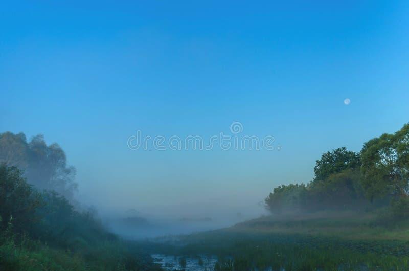 在河的难以置信的薄雾在黎明 在月亮和野生生物的背景的夜 免版税库存图片