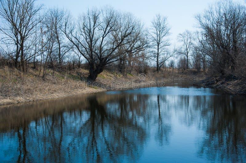 在河的Sprin洪水 免版税库存照片