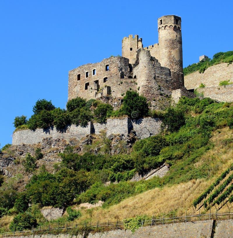 在河莱茵河的城堡废墟 图库摄影