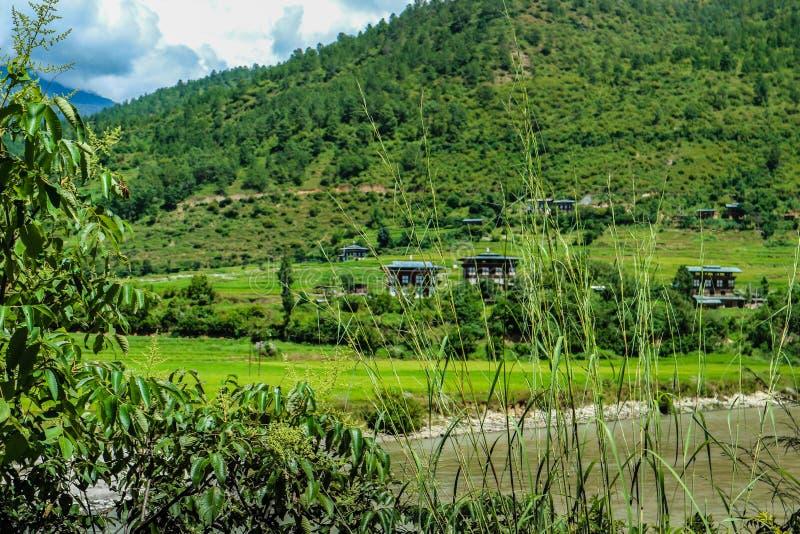在河附近的不丹村庄Punakha的,不丹 免版税库存照片