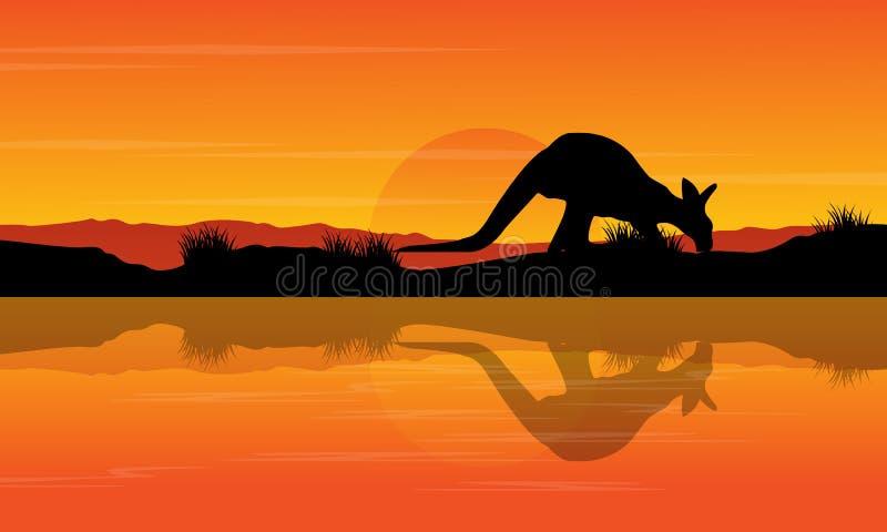 在河风景的剪影袋鼠 皇族释放例证