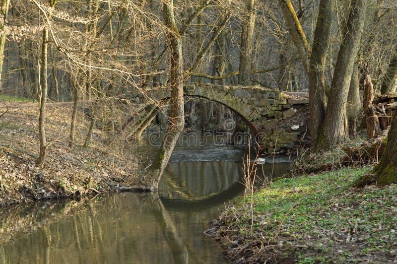 在河,森林围拢的桥梁 在小河的石桥梁 青苔石头 r 库存照片
