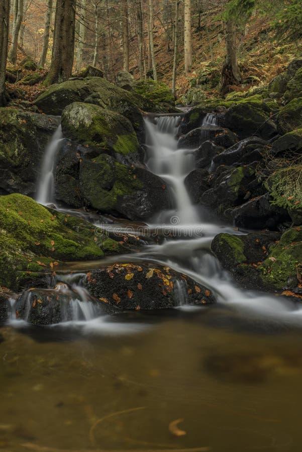 在河Cista的瀑布Krkonose山的 免版税库存图片