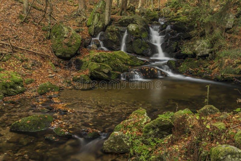在河Cista的瀑布Krkonose山的 库存照片
