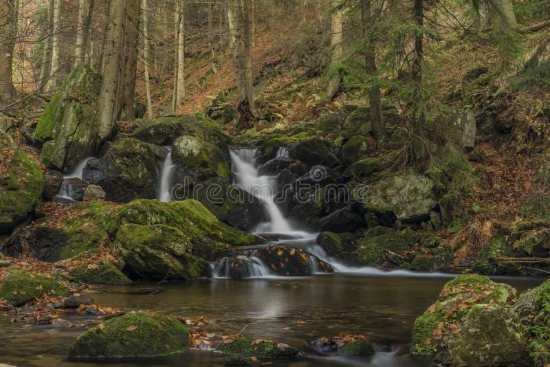 在河Cista的瀑布Krkonose山的 免版税库存照片