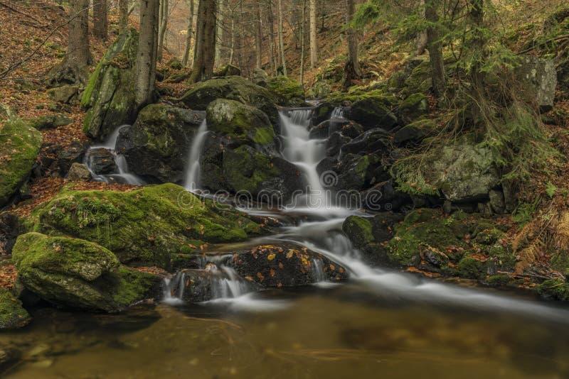 在河Cista的瀑布Krkonose山的 免版税图库摄影