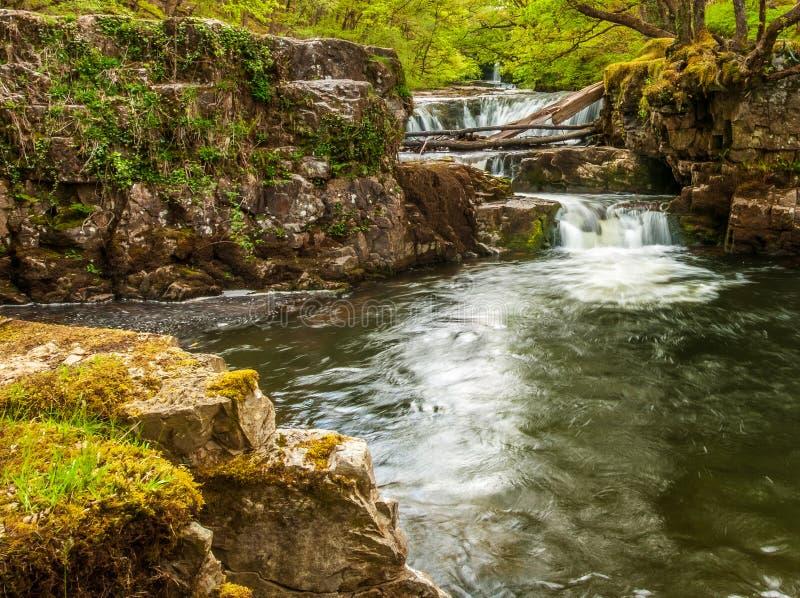 在河Nedd的倾没水池在布雷肯比肯斯山 图库摄影