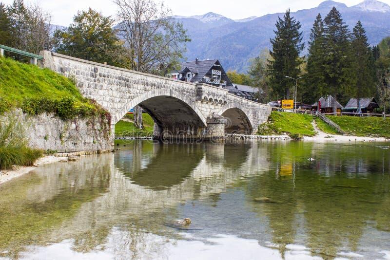 在河Sava Bohinjka,斯洛文尼亚的老石桥梁 免版税库存照片
