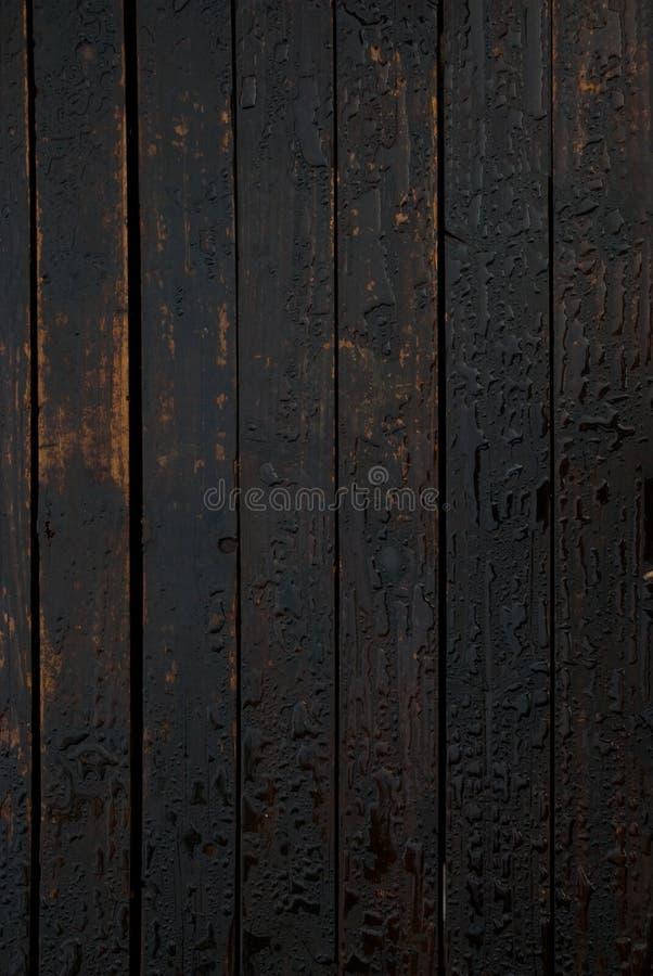 在油被对待的木板条的水滴 库存图片