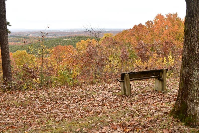 在沼地顶面足迹的一条长凳俯视密苏里 免版税库存图片