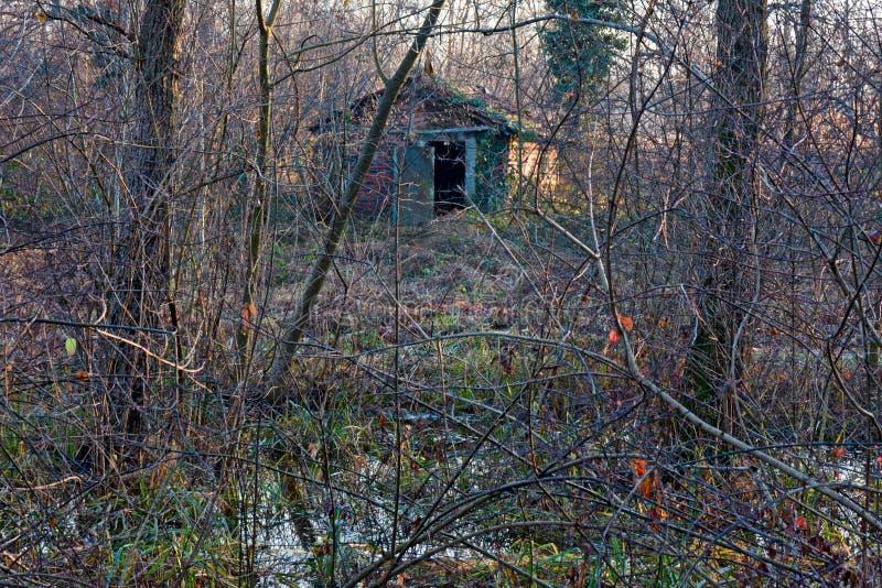 在沼泽中间的一个孤零零房子 图库摄影