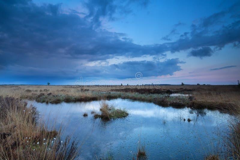 在沼泽的日落天空在夏天 免版税图库摄影