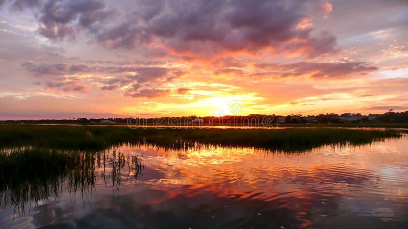 在沼泽草和沿海海洋水的美好的日落在与森林的大浪在背景中 免版税库存图片