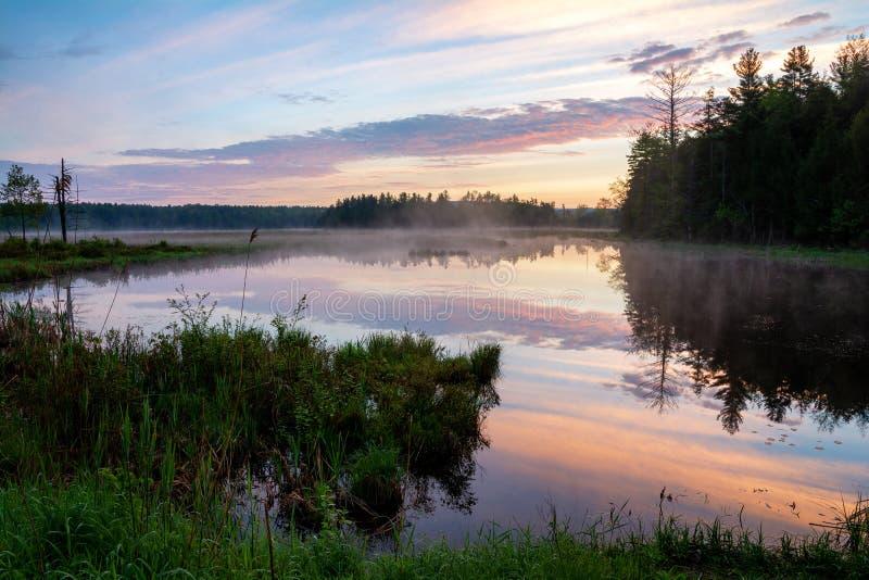 在沼泽阿迪朗达克公园的早晨日出 库存图片