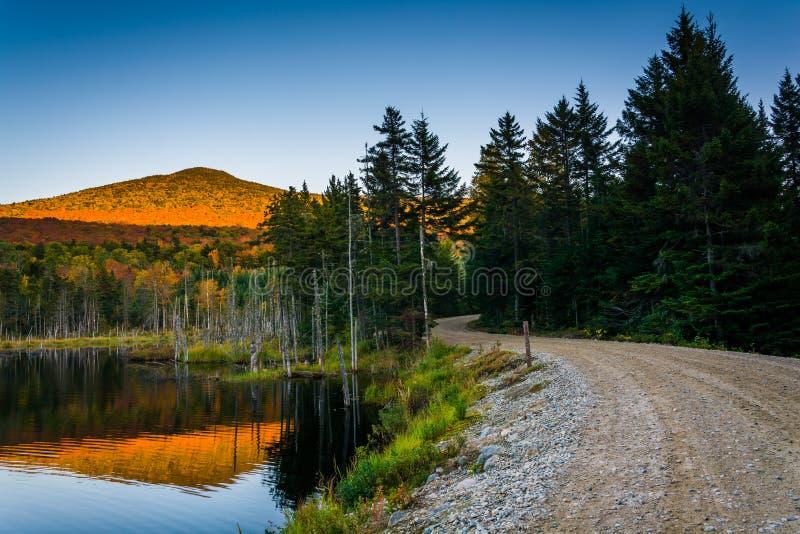 在沿一条土路的一个池塘登上反射的欺骗在白色 免版税库存照片