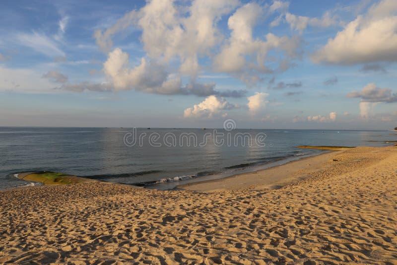 在沿海多岩石的海滩的蓝色胡子在美好的日出下 免版税库存照片