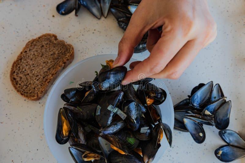 在法国典型的食物的淡菜 图库摄影